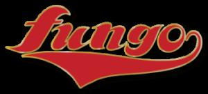 野球ユニフォーム オーダー Fungo